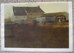 Andrew Wyeth Marsh Hawk