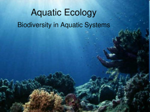 Search Results for: Aquatic Ecology