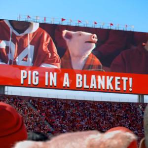 Geico Pig Blanket Mercial