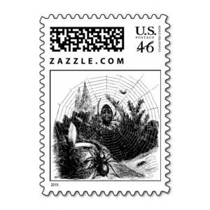 Vintage 1800s Spider Web Illustration - Spiders Stamp