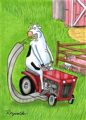 Friday Funny Cartoons