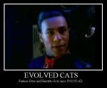 Evolved Cats by THE-DALEK-SUPREME