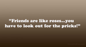 Friends are like roses…you have to look out for the pricks!""