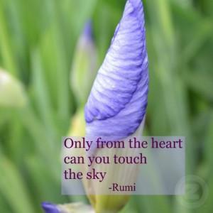 spiritual_iris_inspirational_rumi_quote_magnet-d14799963437789655828r ...