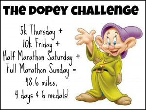 dopey-challenge-Nubers.jpg