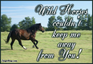... Graphic Comment: Wild Horses Couldnt Keep Me Away From You Quote