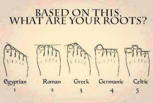 ... collect some facts that can support the feet shape / roots relation