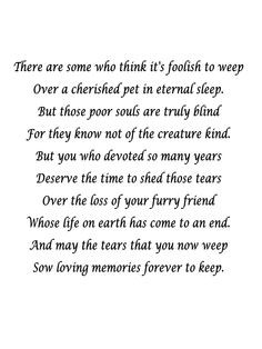 Pet Loss More