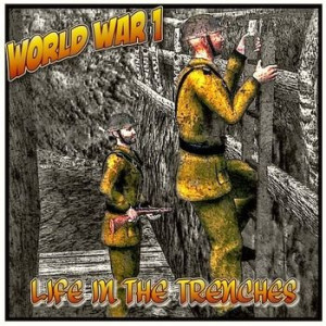 book to introduce the history of trench warfare during World War 1 ...