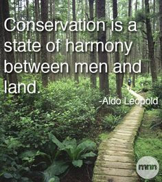 Conservation is a state of harmony between men and land More
