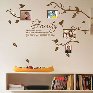 ... -Bird-Photo-Frame-Nursery-Art-Wall-Stickers-Quotes-Wall-Decals-Deco