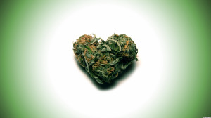 Weed Store Top Rated Blog Submit Wallpaper
