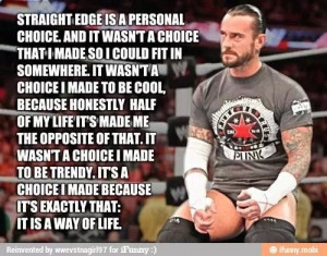 ... Quotes, Quotes Punk, Straight Edging, Wwe Quotes, Wwe 3, Cm Punk, Punk