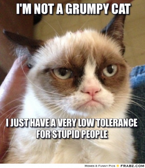 frabz-Im-not-a-grumpy-cat-i-just-have-a-very-low-tolerance-for-stupid ...