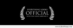 everything-looks-official-facebook-cover