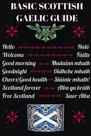 basic phrases in Scots Gaelic-- wait ... Have I already pinned this? I ...
