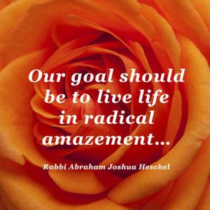 quotes-life-rabbi-heschel-480x480.jpg