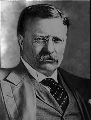 President Theodore Roosevelt's Square Deal Essay Sample