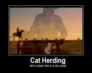 herding cats: Cat Funny, Dance Troupe, Cat Herder, Humor Animal, Herd ...