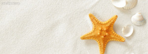 Star Fish And Sea Shells Facebook Cover Picture