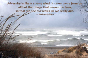 Motivational Adversity Picture Quotes And Sayings By Famous People