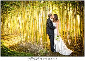 japanese-friendship-gardens-balboa-park-san-diego-wedding-photography ...