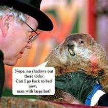 Happy Groundhog Day- Groundhog funny facebook for the day