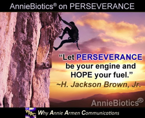 PERSEVERANCE Quotes in Business and in Life! | WhyAnnieArmen.com