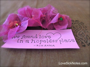 ... : Where To Find Hope In A Hopeless Place With Picture Of Purple Rose
