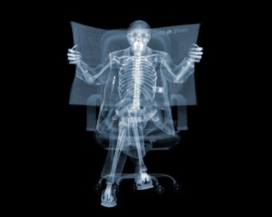 Beautiful X-Ray Photography (30 pics)