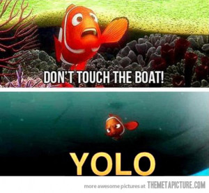 see the best of finding nemo finding nemo funny best of photos of the ...