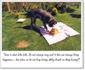 Best Friendship & Love Quotes.....