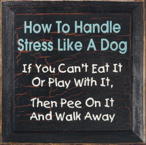 handle stress like a dog, quotes about handling stress, quotes about ...