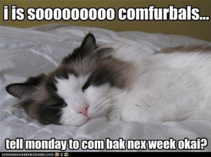 Funny monday picture quotes si shinta itu usmi oh monday