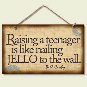 Raising a teenager is like nailing jello to the wall.