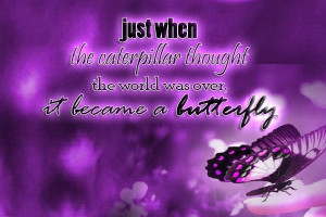 We delight in the beauty of the butterfly, but rarely admit the ...