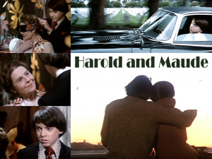 Harold and Maude- with Cat Stevens'