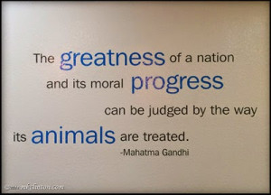 Isn't this a great quote to be on a vet's walls?