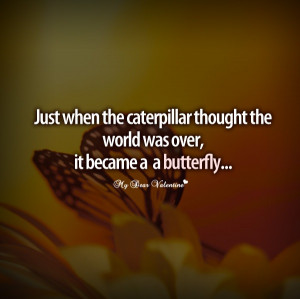 butterfly inspirational quotes share this inspirational quote on ...