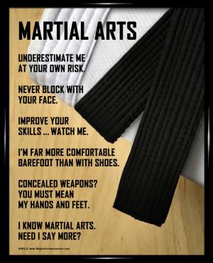 Martial Arts Poster Print