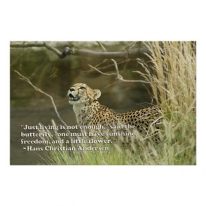 CHEETAH WATCHING MONARCH BUTTERFLY WITH QUOTE POSTER