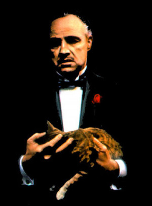 don vito corleone corleones tweets 8 followers 118 more unmute ...