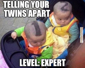 Cute memes – Telling your twins apart