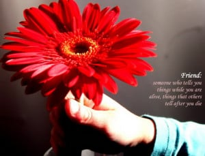 friends quote with flower friendship quotes with flowers flower ...