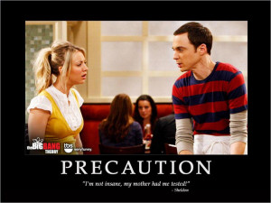 Sheldon Cooper I'm not insane, My mother had me tested