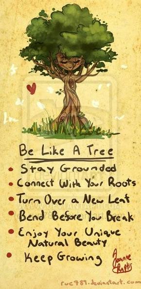 billboard lovely as a tree