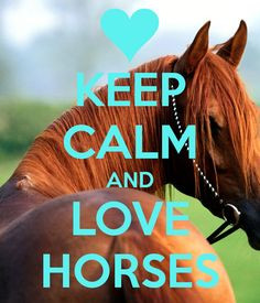 Keep Calm and Love Horses More