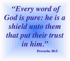 Bible Verses About Trust: 20 Helpful Scripture Quotes
