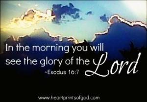 God's Glory~
