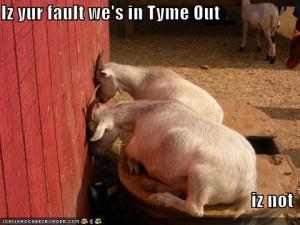 Funny Goats